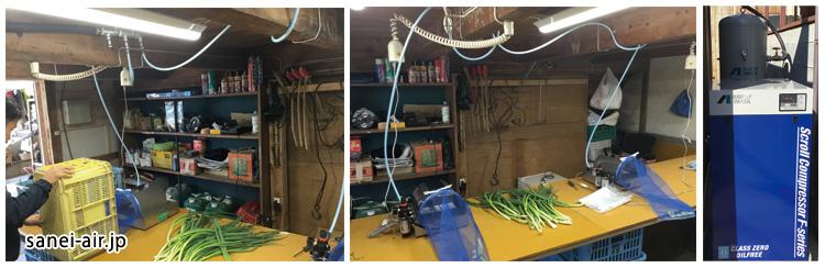 農業・ネギの皮剥き機・ビレッジロックファーム